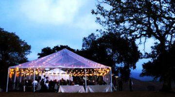 Style Scenario: Spring / Summer Wedding, Smart but not Stuffy